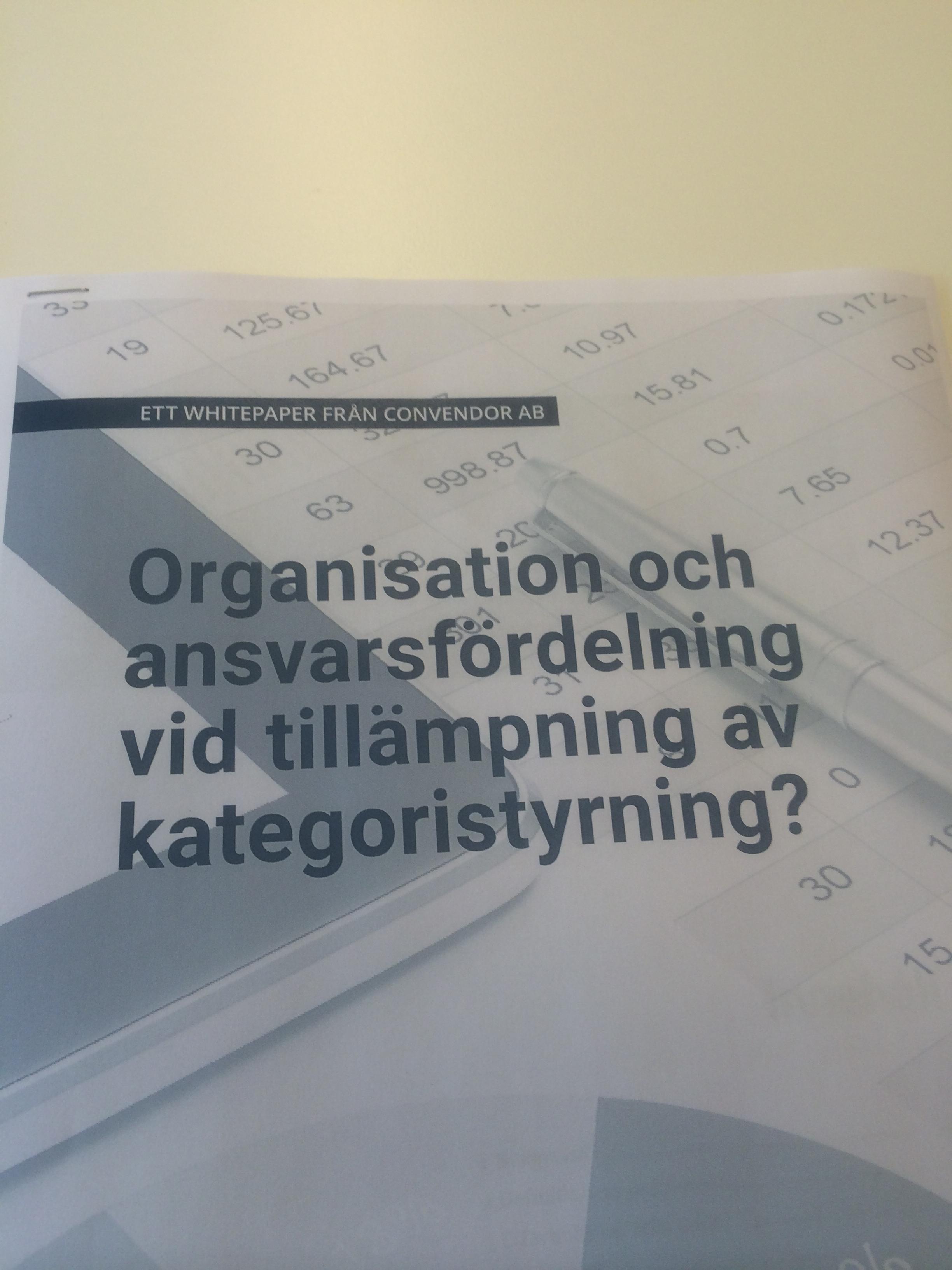 Whitepaper om organisation och ansvarsfördelning